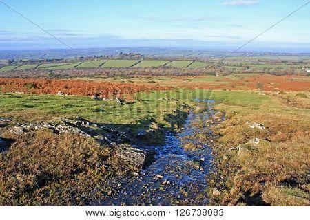 Stream on Dartmoor, Devon in the winter