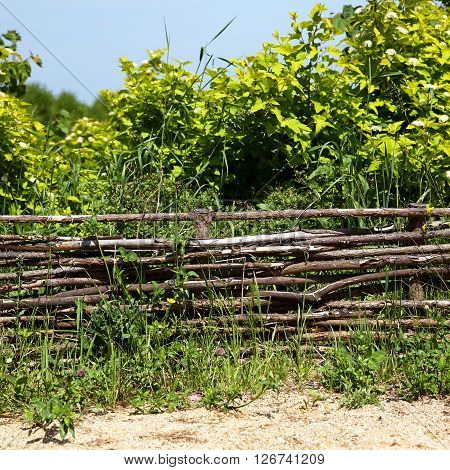 wicker rustic fence in the summer garden on grass background.