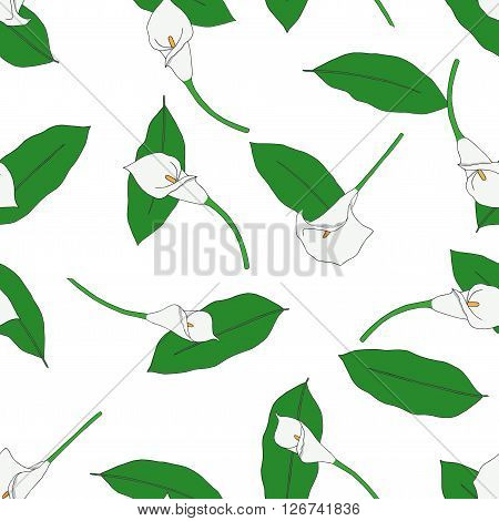 Seamless pattern with hand drawn white callas
