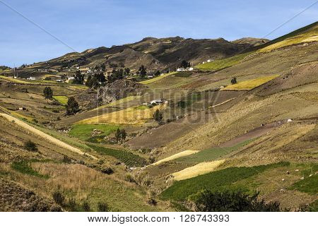 Cultivated fields on slopes, around Zumbahua, Ecuadorian Andes.