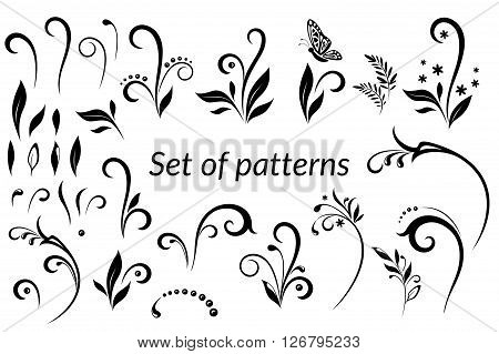 Set of Vintage Calligraphic Elements, Floral Patterns and Butterfly, Black Silhouettes Isolated on White Background. Vector