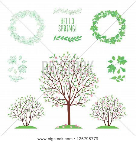 Hello spring. Spring background with trees and leaves. Set of images with leaves of different trees. Wreath of leaves. Hand drawn leaves. Sketch, design elements. Vector illustration.