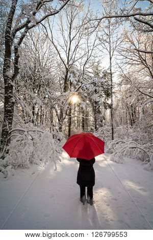 A beautiful winter sunrise snow scene with a woman walking with a red umbrella casting a long shadow from the sun.