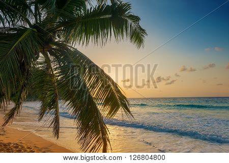 sunset on anse georgette beach in praslin island seychelles