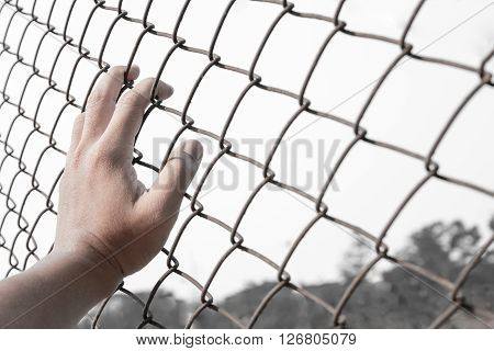 close up of hand on chain-link fence selective focus