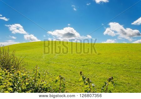 Calm idyllic landscape with grass field small hill bushes and blue sky with clouds