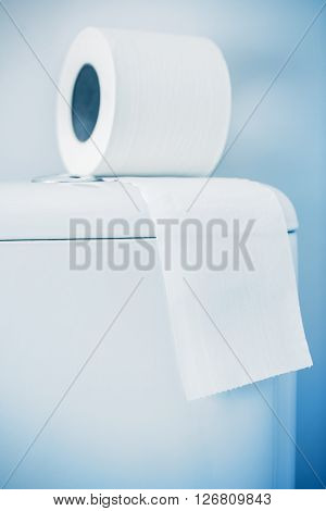 Hygienic Paper On White Toilet Tank