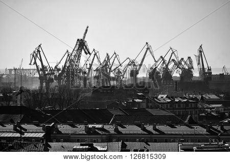 Aerial view of numerous cargo cranes in Saint-Petersburg port Russia. Industrial urban landscape. Black and white processing.
