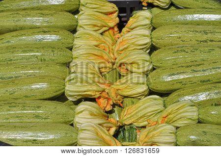 Zucchini Aka Courgettes Vegetables
