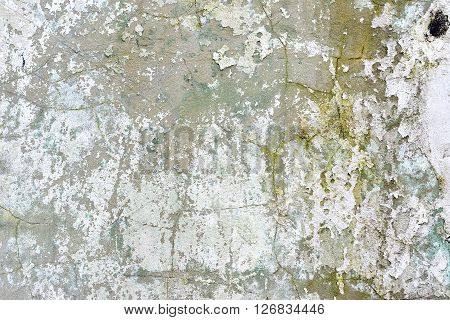 Peeling white paint from derelict old building