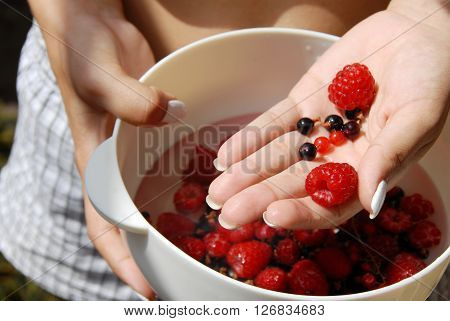 woman hand holding white bowl with red raspberries and currants