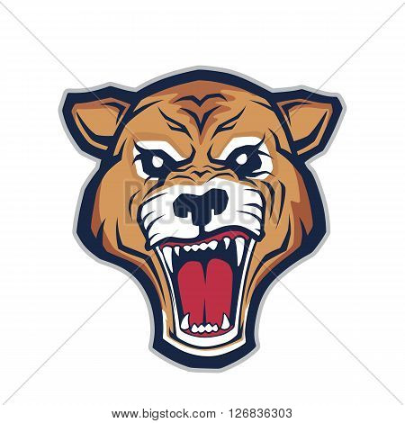 Clipart picture of a cougar head cartoon mascot character