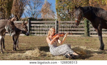Portrait of a young woman musician, scene at a farm