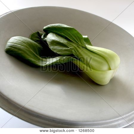 Baby Bok Choy On An Old Pot Lid