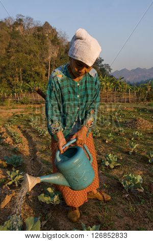 MAE HONG SON , NORTHEM THAILAND - JULY 19, 2005 :  July 2005, In the province of Mae Hong Son, north of Thailand close to Myanmar border. An old Thai peasant woman, watered her vegetable garden.