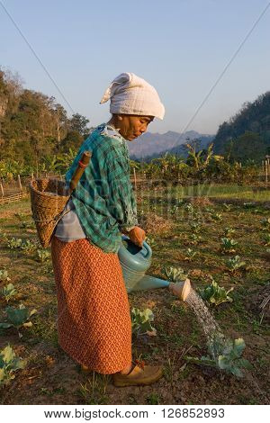 MAE HONG SON , NORTHEM THAILAND - JULY 19, 2005 : 