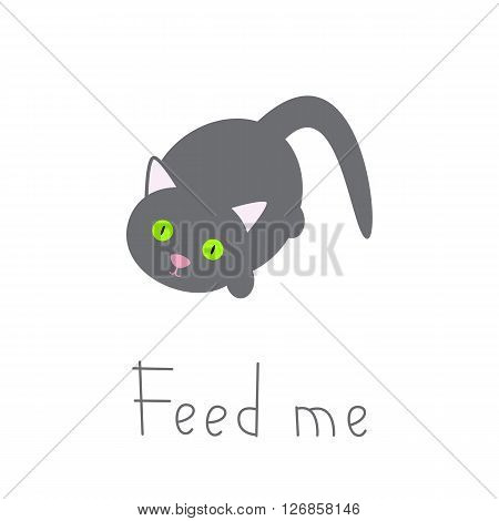 Cute cat waiting for food. Grey animal isolated on white background and lettering feed me. Flat style illustration. Design element. Greeting card. Invitation template