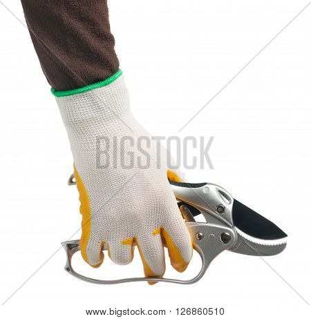 Sharp garden scissors in the female hand isolated on white background