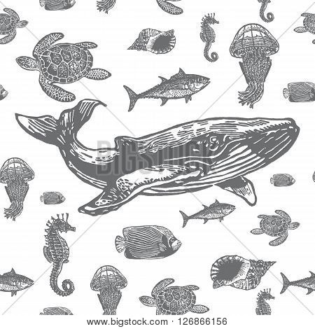 Sea animals black and white seamless vector pattern. Realistic engraved style of Sea animals on white background.
