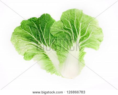 The fresh chinese cabbage leaf on a white background