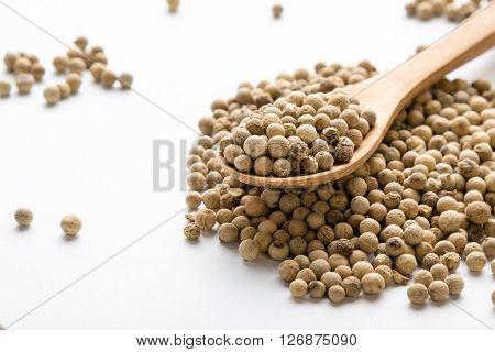 White Peppercorn Seeds