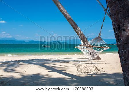 palm trees and cradle on beach with blue sea background in summer season