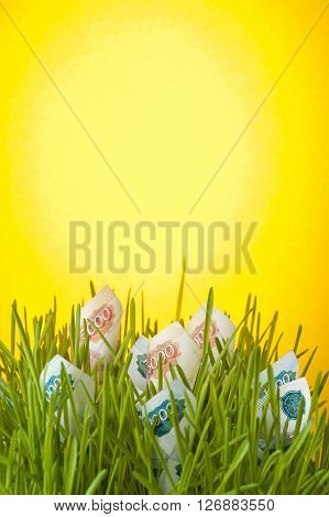 Money growth: ruble bills in green grass. Appreciation of ruble. Financial concept.