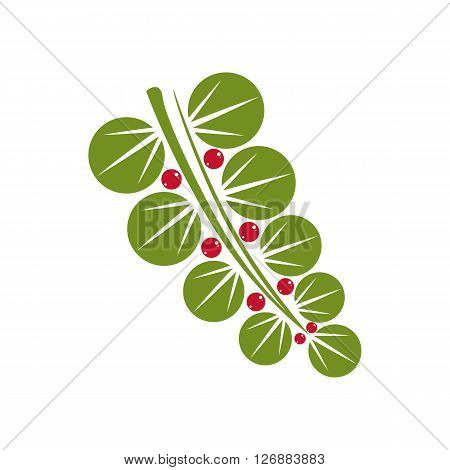Single vector flat green leaf with red seeds. Herbal and botany symbol spring season natural icon isolated on white background. Ecology conservation theme design element.
