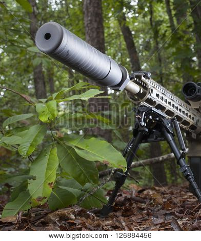 Suppressor that is mounted on a modern sporting rifle in the woods