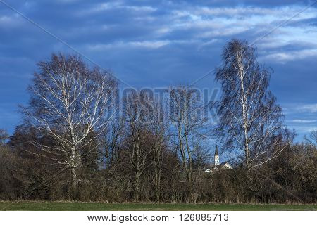 white church between branches behind shrubbery trees and two sunny birches and cloudy sky