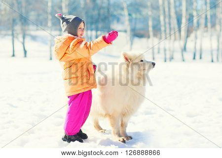 Child With White Samoyed Dog On Snow In Winter Park Looking Away
