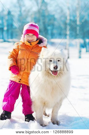Smiling Child With White Samoyed Dog On Snow In Winter Day