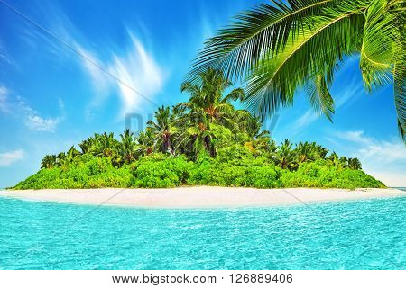Whole tropical island within atoll in tropical Ocean. Uninhabited and wild subtropical isle with palm trees. Equatorial part of the ocean tropical island resort.