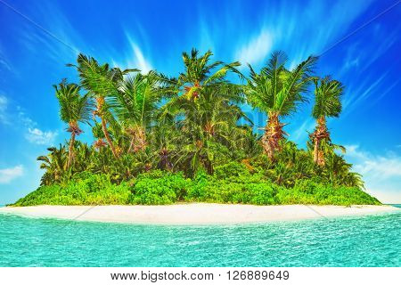 Whole Tropical Island Within Atoll In Tropical Ocean. Uninhabited And Wild Subtropical Isle With Pal