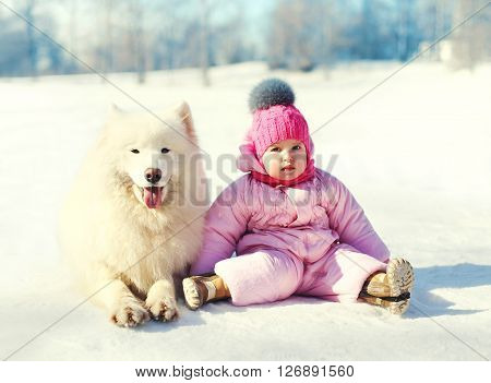 Child And White Samoyed Dog Sitting On Snow In Winter Day