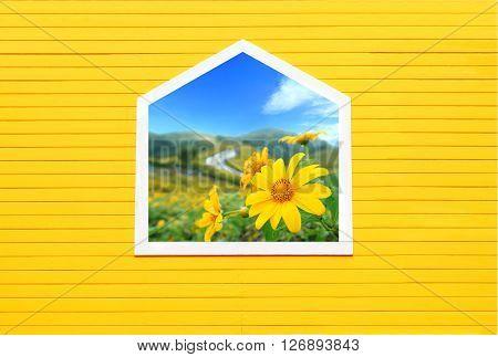 Open window with flowers outsideWindow on yellow wooden wall.