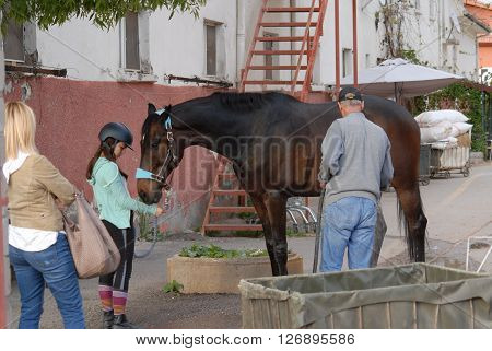 ANKARA/TURKEY-APRIL 13, 2016: Young rider and stableman with race horse at the paddock. April 13, 2016-Ankara/Turkey