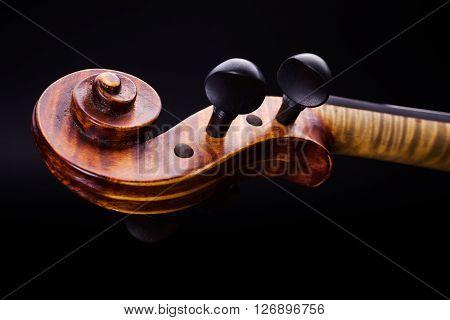 Close View Of Violin Pegbox