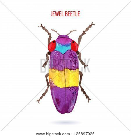 Colorful hand painted watercolor bug beetle isolated on white background. Bright insect named Jewel Beetle. Yellow red blue and purple graphic design element. Raster illustration.