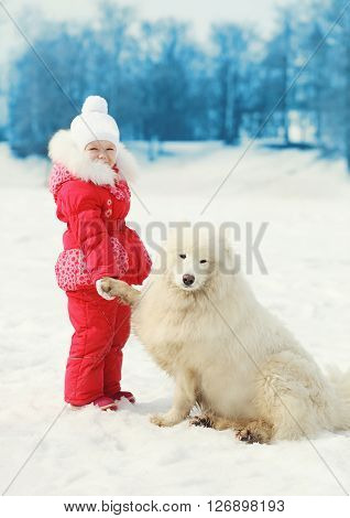 Child with white Samoyed dog on snow in winter park