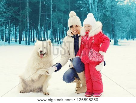 Mother and child with white Samoyed dog in winter