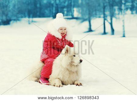 ?hild And White Samoyed Dog Walking In Winter Day
