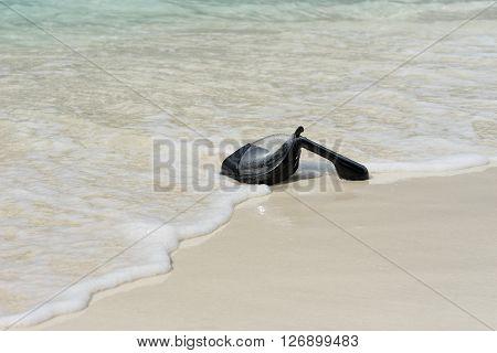 Black Snorkeling Mask on the sea Maldives