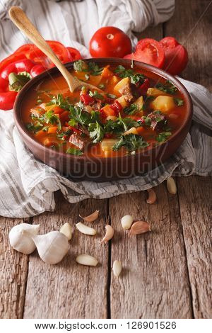 Tasty Hungarian Goulash Soup Bograch Close-up And Ingredients. Vertical