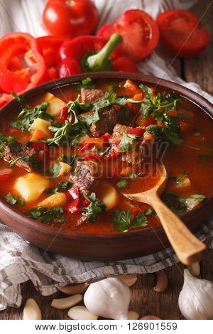 Traditional Hungarian Goulash Soup Bogracs Close-up In A Bowl. Vertical