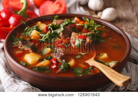 Hungarian Goulash Soup Bograch Close-up. Horizontal