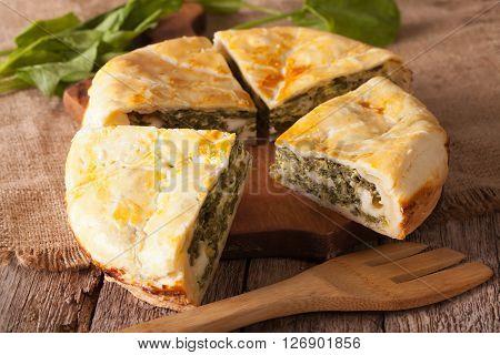 Tasty Sliced Greek Spanakopita Pie Close-up. Horizontal