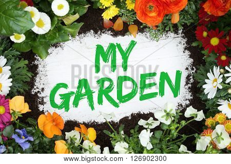 My Garden With Flowers Flower Hobby Freetime