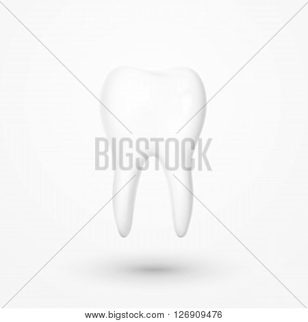 Realistic tooth isolated on a white background . White tooth for dental services. Tooth 3D. Tooth with a transparent shade . Molar. Teeth whitening . Tooth for a banner . Advertising dentistry.