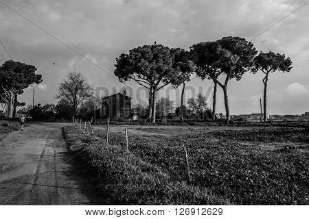 Italy Rome - an old Roman countryside located in Aqueducts Park